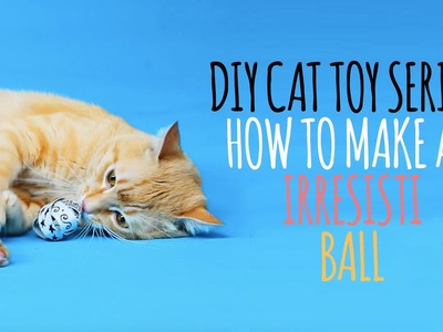 DIY Cat Toys - How to Make an Irresistiball