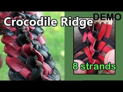 DEMO 16: Crocodile Ridge Braid w. 8 Strands of Leather