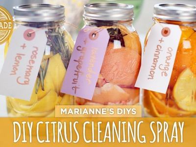 DIY Citrus Natural Cleaning Spray - HGTV Handmade