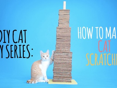 DIY Cat Toys - How to Make a Cat Scratcher