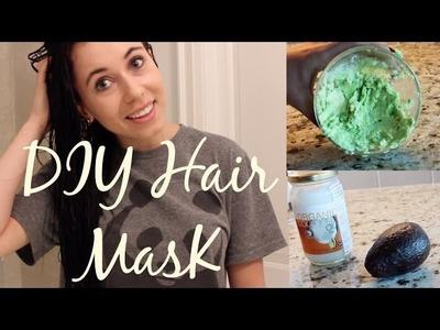 DIY Hair Mask: Avocado & Coconut!
