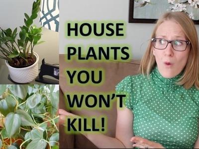 STOP KILLING YOUR HOUSE PLANTS! | Best House Plants
