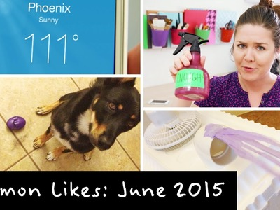 June 2015 ❋ Lemon Likes | DIY AC Cooler & Dog Toy Haul