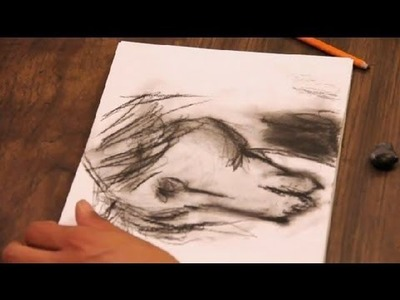 Tutorial on How to Draw a Horse in Charcoal : Art Tutorials