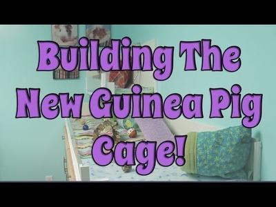 BudgetBunny: Building The New DIY Guinea Pig Cage!
