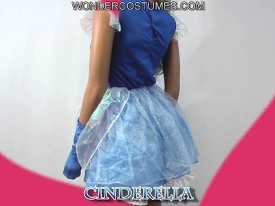 Disney Cinderella Adult Costume