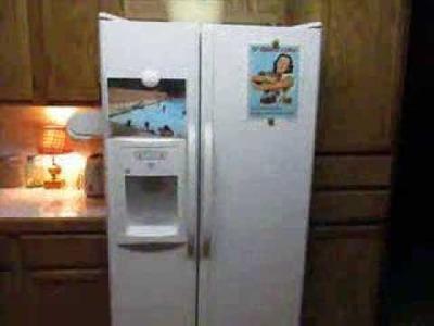 Organization Solution for Refrigerator
