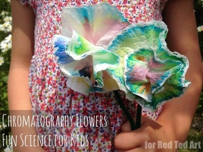 Chromatography flowers - easy science craft (Guest Vlog)