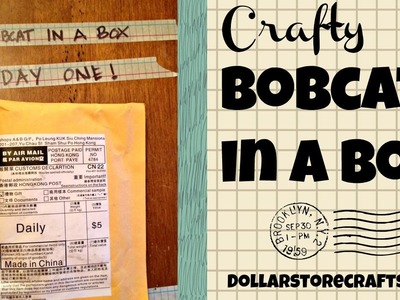 Dollar Store Crafts: Crafty Bobcat in a Box, Unboxing Day 1 (1.6.2015)
