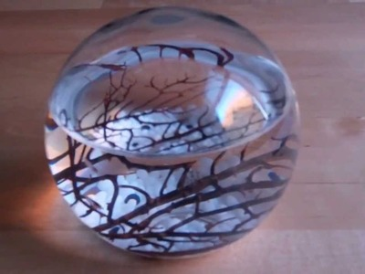 EcoSphere - a living piece of art and science