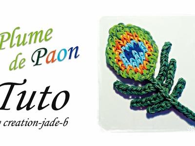Tuto Rainbow Loom - Plume de Paon ! ( Mural sans fond )