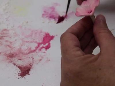 Dusting Your Gumpaste Cherry Blossom (Part 2.2)