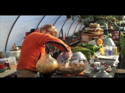 Creating a Terrarium by Ken Selody of Atlock Flower Farm