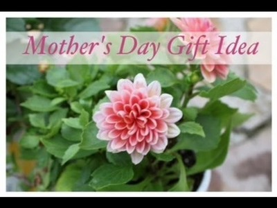 Mother's Day Gift Idea!