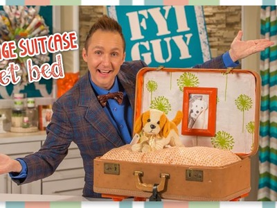 FYI GUY: Vintage Suitcase Pet Bed