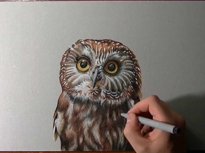 How I draw an owl