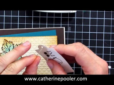 Masculine Card Making Video Tutorial with Catherine Pooler