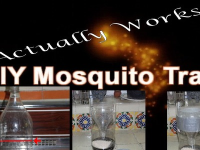 DIY Mosquito Trap that WORKS!