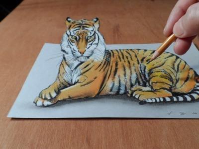 Trick Art, Watch my Draw a 3D Tiger