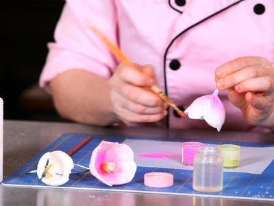 How to Paint Tulip Petals | Sugar Flowers