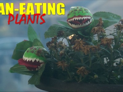 DIY Halloween Man Eating Plant Props For A Haunted House