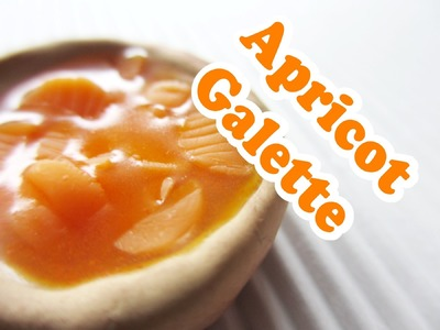 Apricot Galette. Collab with Entertaining With Beth