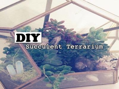 ☾ DIY: Healing Crystal Succulent Terrarium ☽