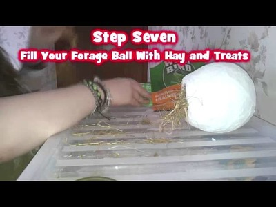 DIY Hamster Toy | Small Animal Forage Ball