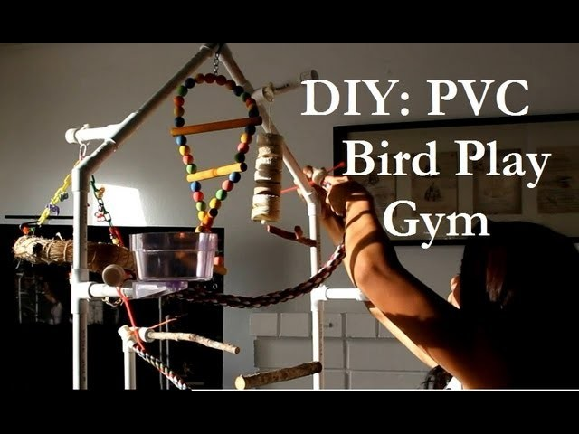DIY: PVC Bird Play Gym