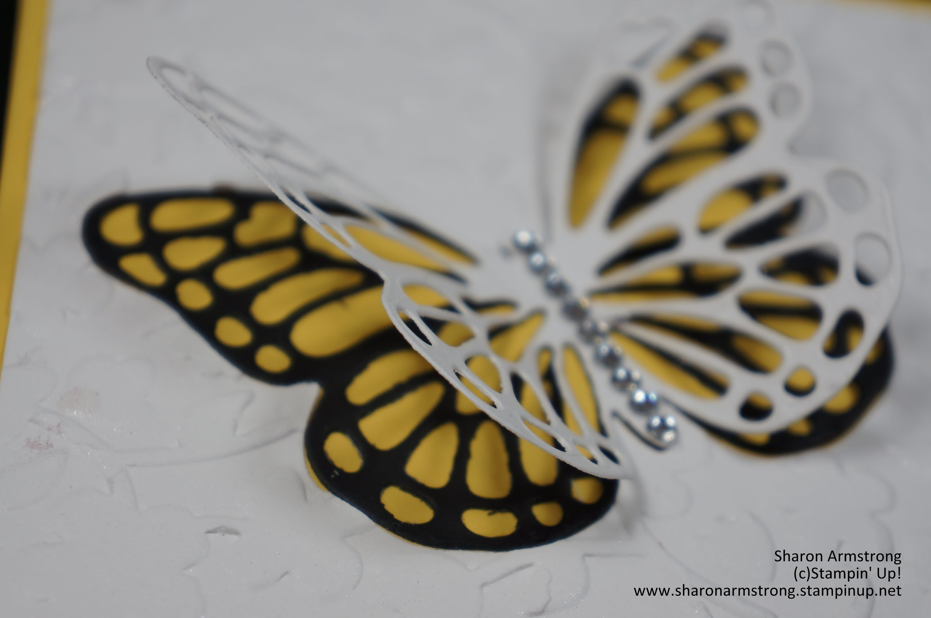 Butterfly Thinlet Dies by Stampin' Up!