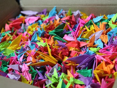 Folding 1000 Origami Paper Cranes for a BlackBerry 10 Phone