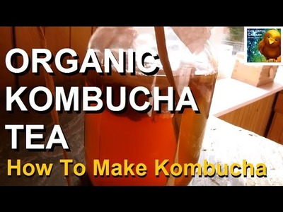 How to Make Organic Kombucha