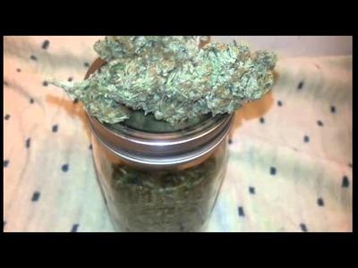Curing your marijuana