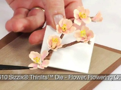 How to Use Sizzix Thinlits Flowering Quince  Die 658410