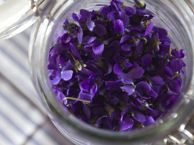 Making Perfume from Violets: Enfleurage  |  Fresh P