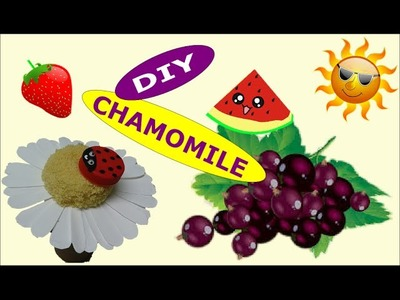DIY Crafts: Chamomile out Recycling Plastic Bottles - Recycled Bottles Crafts