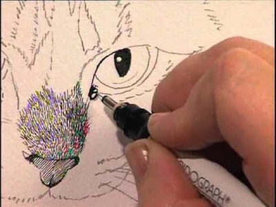 Creating Textures in Pen & Ink with Watercolor Claudia Nice, Part 2
