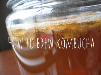 How to Make & Brew Kombucha Tea