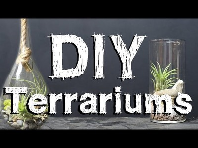 MakersKit Video Guides: Build Your Own Terrarium
