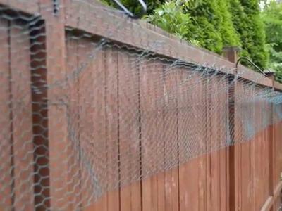 DIY Cat Fence