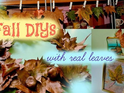 ☂ Fall room decor DIY with real leaves ☂ Fall wreath, hanging leaves and more!