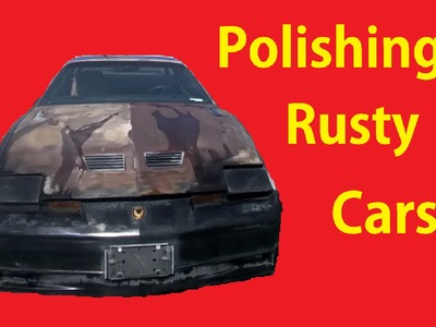 Detailing a Barn Find Patina on Car Polish Wash Cleaning DIY #2