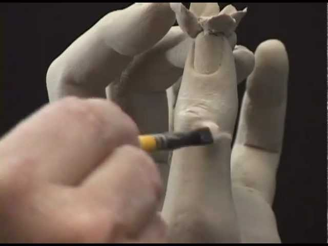 Sculpting The Hand