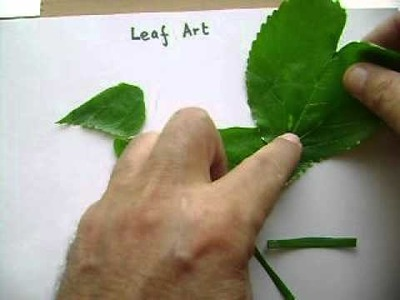 How to create simple leaf art showing a bird?