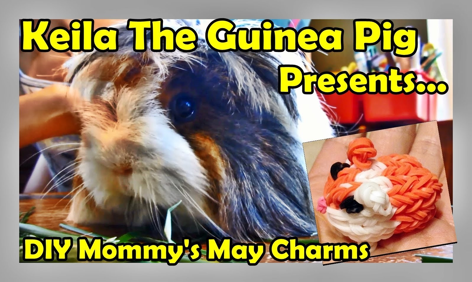 Rainbow Loom Charms Review for May with Keila the Guinea Pig