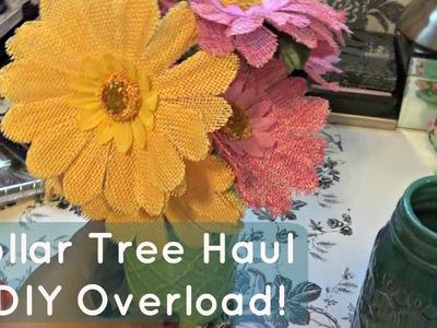 June Dollar Tree Haul & DIY Overload