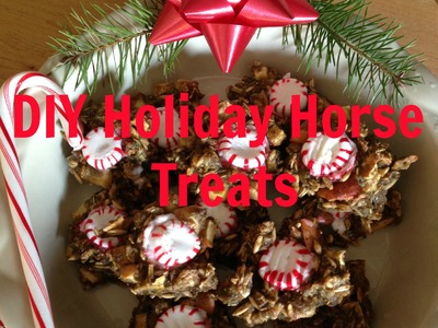 DIY Holiday Horse Treats