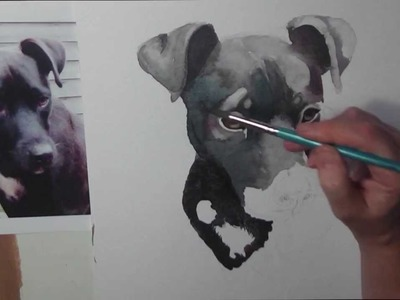 Painting a watercolour portrait of a black dog by Gill Bustamante - Sussex Artist