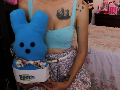 DIY: Easter.Springtime No Sew Peeps Bunny Pillow