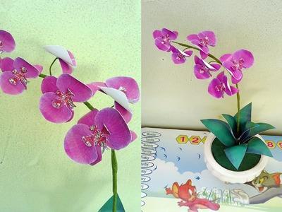 Phalaenopsis orchids paper flower - Làm hoa lan hồ điệp giấy